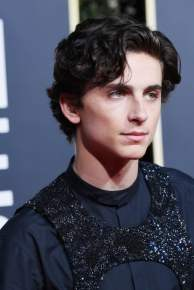 hot-timothc3a9e-chalamet-pictures