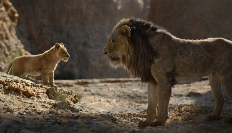 Lion_King__Large